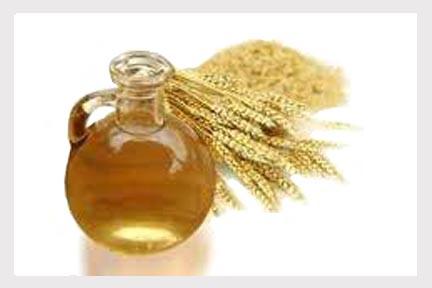 aceite-germen-de-trigo