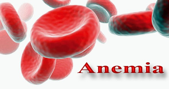 remedios caseros para la anemia