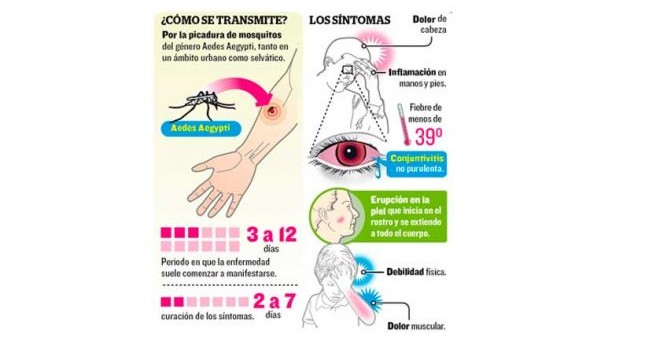 síntomas del zika