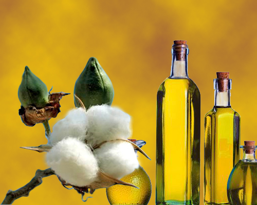 aceite-de-algodon-usos